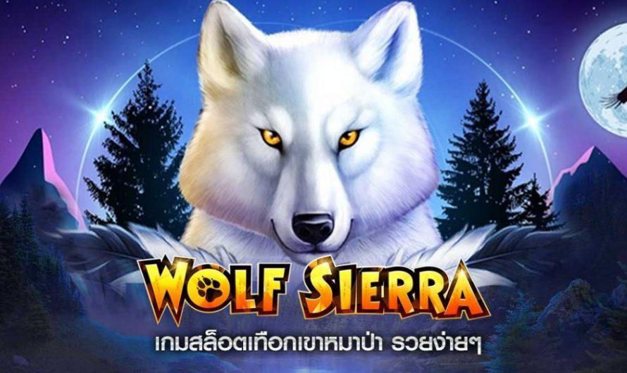 อัตราการจ่ายเงินรางวัลจากเกม สล็อตหมาป่า ในคาสิโนออนไลน์